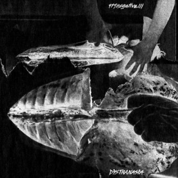 777negative111 album cover