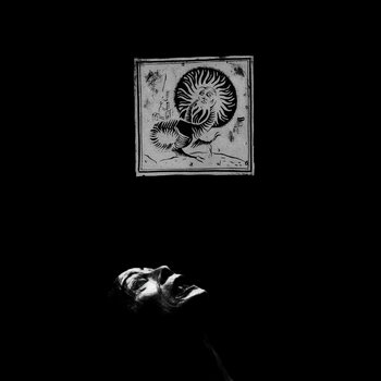 aarvo steinberg album cover