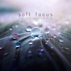 linn friberg album cover