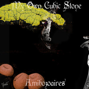 my own cubic stone album cover