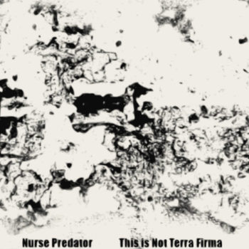 nurse predator album cover