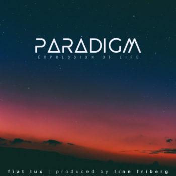 paradigm album cover